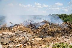Lixo que queima-se em uma descarga da cidade fotos de stock