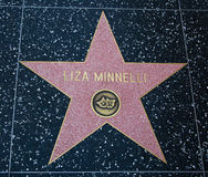 Liza Minnelli Royalty Free Stock Images