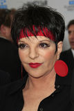 Liza Minnelli Royalty Free Stock Photo