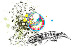 Free Lizard Royalty Free Stock Photography - 12538037