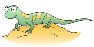 Lizard. Illustration of a lizard sitting on a stone Royalty Free Stock Photo