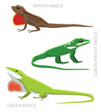 Lizard Anole Set Cartoon Vector Illustration vector illustration
