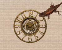 Lizard and clock. Lizard and a clock on a stone wall Stock Images