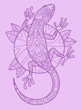 Lizard color drawing vector Royalty Free Stock Images