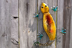 Lizard On Fence Royalty Free Stock Images