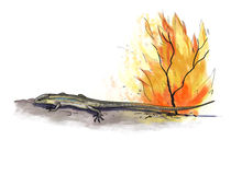 Lizard fire danger. Digital illustration of a lizard fire danger Stock Images