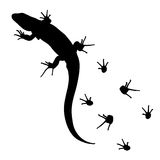 Lizard and footprints silhouette vector. Lizard and footprints silhouette vector Stock Image