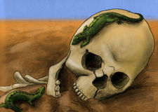 Lizard games. Two lizards playing hide and seek on the human skull in the deserted land. Symbol of life and death coexistence. Colored pencil drawing, sketch Stock Image