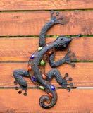 Lizard in the garden Stock Images