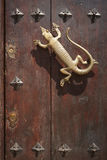 Lizard golden door knob in a rustic gate Royalty Free Stock Photos