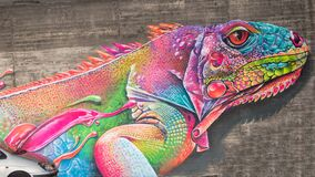 Lizard Graffiti, colorful lizard in all rainbow colors on dirty wall under highway