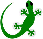 A lizard in green shadow Stock Photography