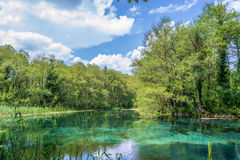Blue Turquoise Springs Royalty Free Stock Image