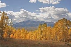 Lizard Head wilderness, Colorado Royalty Free Stock Photos