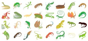 Lizard icon set, cartoon style. Lizard icon set. Cartoon set of lizard vector icons for web design isolated on white background Royalty Free Stock Images