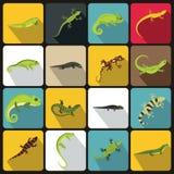 Lizard icons set, flat style Royalty Free Stock Photos