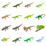 Lizard icons set, isometric 3d style Royalty Free Stock Image