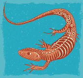 Lizard Illustration Stock Photo