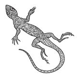 Lizard isolated. Hand drawn  salamander with ethnic tribal Stock Photography