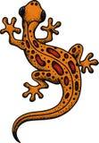 Lizard isolated Stock Photo