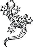 Lizard isolated Stock Image