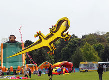 Lizard kite being launched at festival. Stock Photos