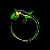 Lizard logo Royalty Free Stock Photos