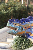 Lizard in park Guel royalty free stock images