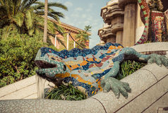 Lizard in Park Guell in Barcelona, Spain. Stock Photos