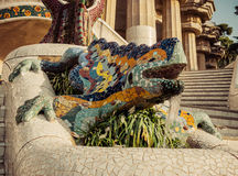 Lizard in Park Guell in Barcelona, Spain. Royalty Free Stock Photography