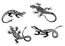 Lizard reptiles. Set in trbal style for tattoo or mascot design Stock Photos