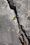 Lizard on rock and climbing equipment Stock Photos