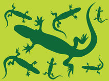 Lizard's background. Illustration of green lizard background Royalty Free Stock Images