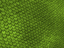 Lizard scales. Green snake scales Royalty Free Stock Image