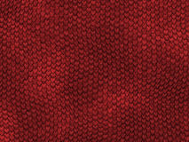 Lizard scales. Red snake scales Royalty Free Stock Images