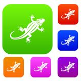 Lizard set collection. Lizard set icon in different colors isolated vector illustration. Premium collection Royalty Free Stock Photo