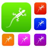 Lizard set collection. Lizard set icon in different colors isolated vector illustration. Premium collection Royalty Free Stock Image