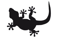 Lizard silhouette. Lizard sihouette isolated against white Royalty Free Stock Photography