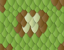 Lizard skin Royalty Free Stock Photos