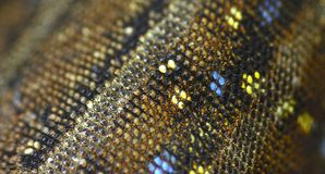 Lizard skin panorama Royalty Free Stock Photos