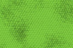 Lizard Skin Pattern Stock Photography