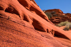 Lizard on steep, featured red sandstone rock face Royalty Free Stock Image