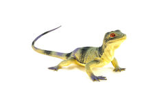 Lizard toy. Isolated on white royalty free stock image