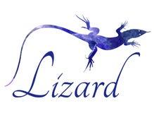 Lizard vector image Royalty Free Stock Image