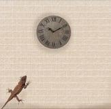 Lizard on the wall. Lizard climbs the wall comic illustration Royalty Free Stock Photo