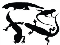 Lizards. Isolated silhouettes of different lizards Royalty Free Stock Images