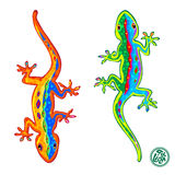 Lizards Royalty Free Stock Image