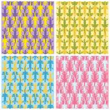 Lizards color patterns Stock Image