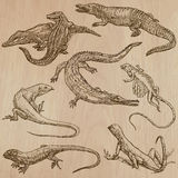 Lizards - An hand drawn vector pack Stock Photo