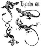 Lizards set. The  image of a dial-up of lizards in the form of a tattoo on a white background Stock Photos